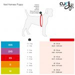 curli_Vest_Harness_Puppy_Set_Size_Chart